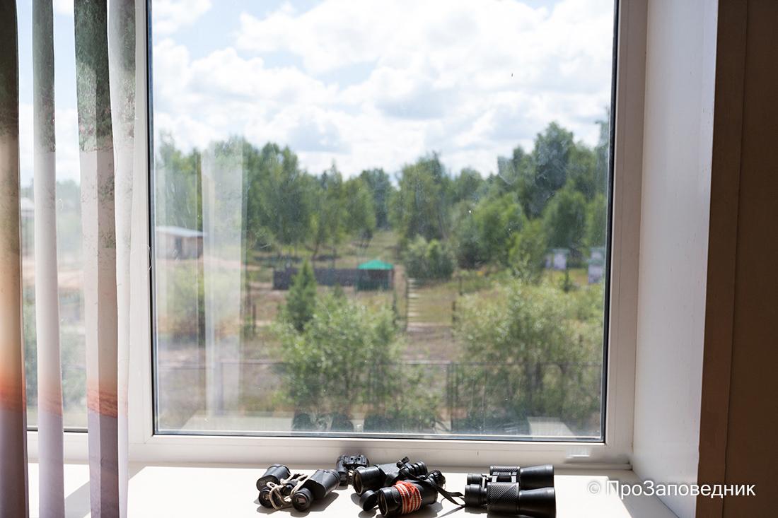 Музей природы Керженского заповедника