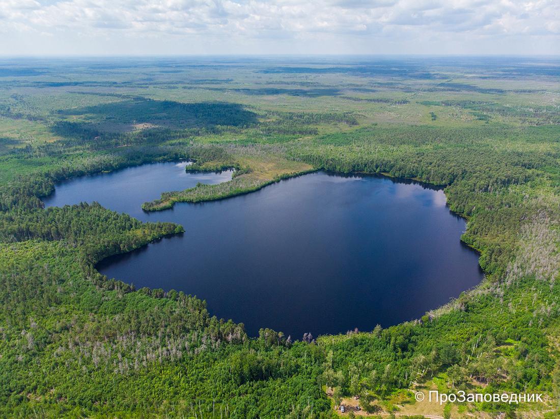 Керженский заповедник. Озеро Черное