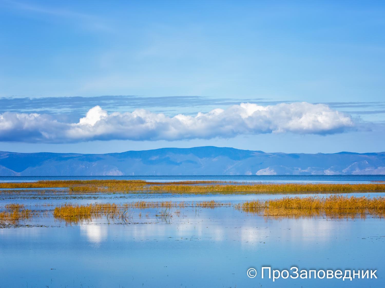 Дельта рекиСеленга
