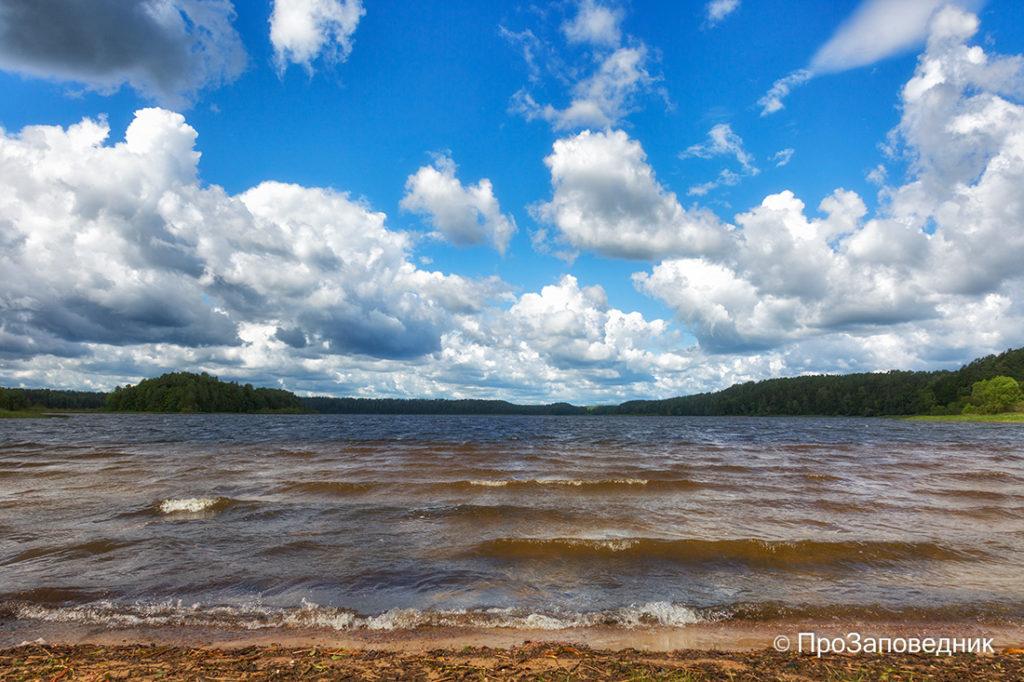 """Озеро Сапшо. Национальный парк """"Смоленское Поозерье"""""""