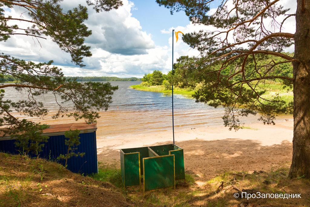 """Берег озера Сапшо. Национальный парк """"Смоленское Поозерье"""""""