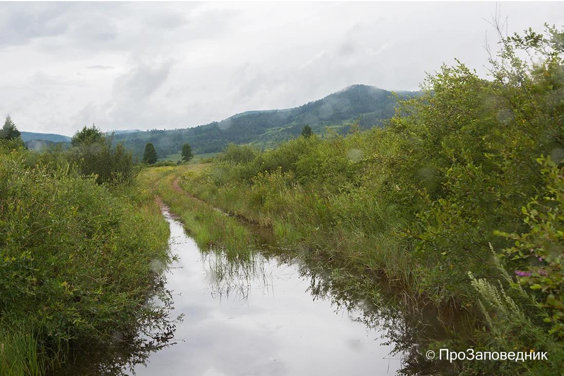 После дождя. Дорога в Сохондинский заповедник