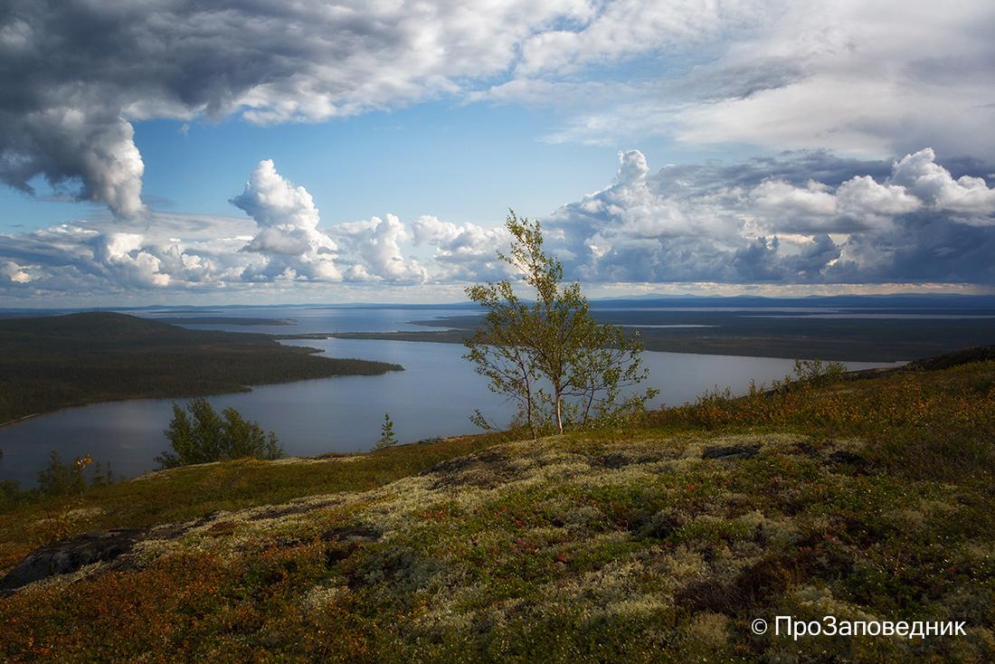 Лапландский заповедник. Озеро Чуна