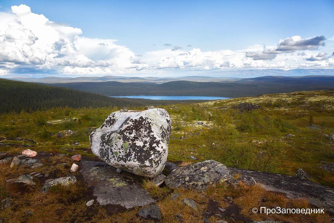 Лапландский заповедник. Вид с вершины горы Ельюн