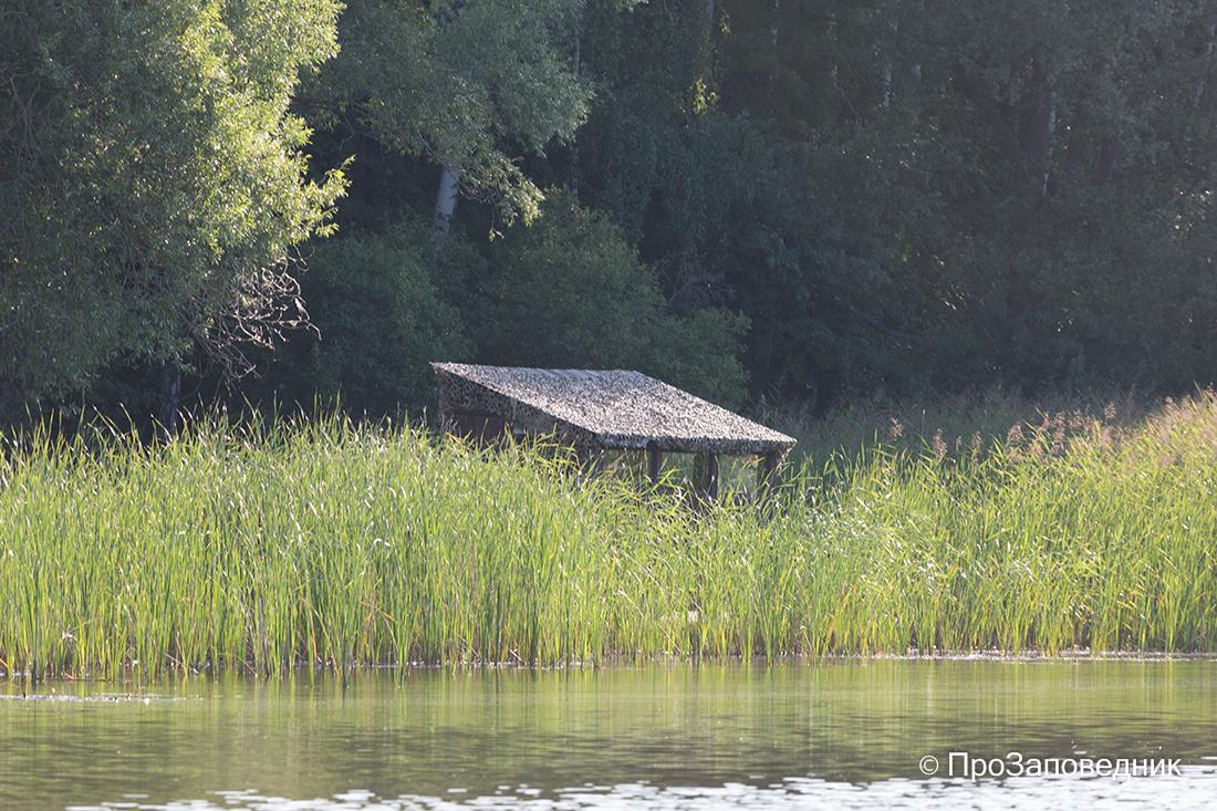 Волжско-Камский заповедник. Скрадок для наблюдения за птицами