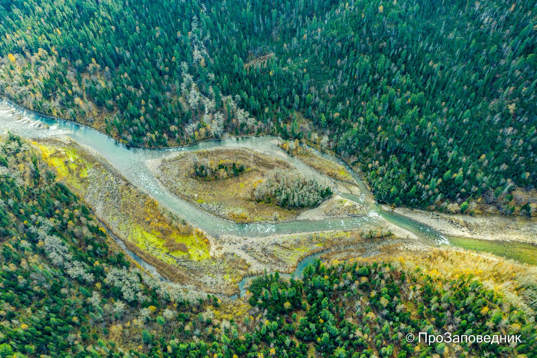 Долина  реки Выдриная.