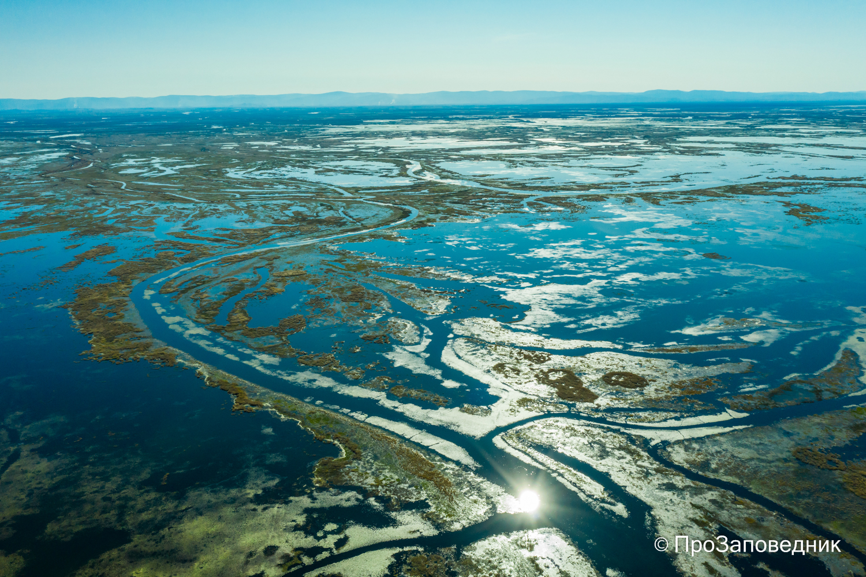 Дельта  реки Селенги. Протока  Средняя