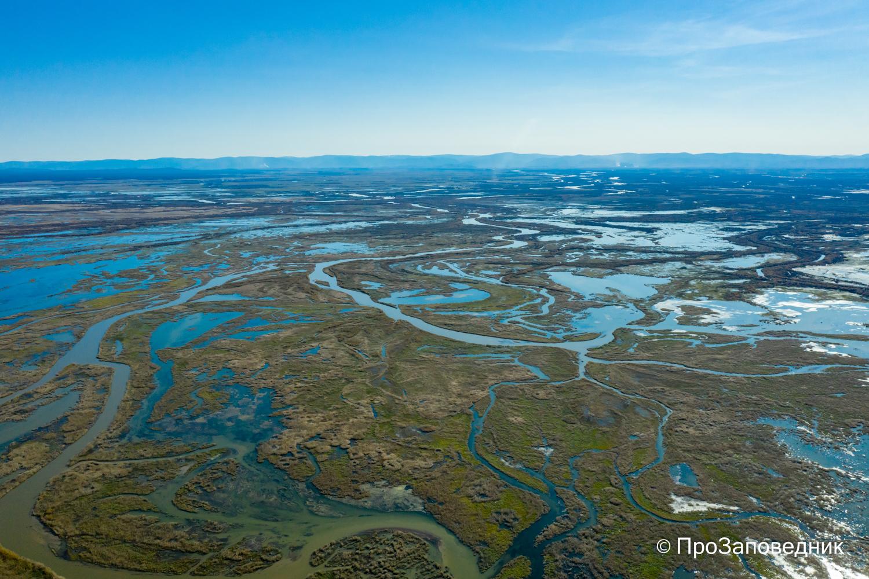 дельта  реки селенга