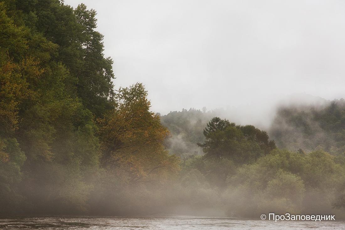 Река Бикин в тумане